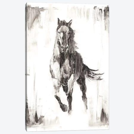 Rustic Black Stallion II Canvas Print #EHA438} by Ethan Harper Art Print