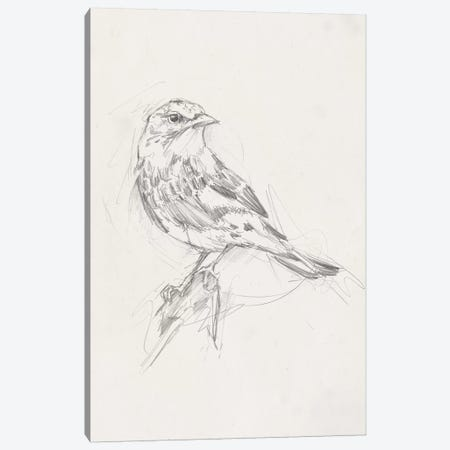 Avian Study  I Canvas Print #EHA461} by Ethan Harper Canvas Artwork