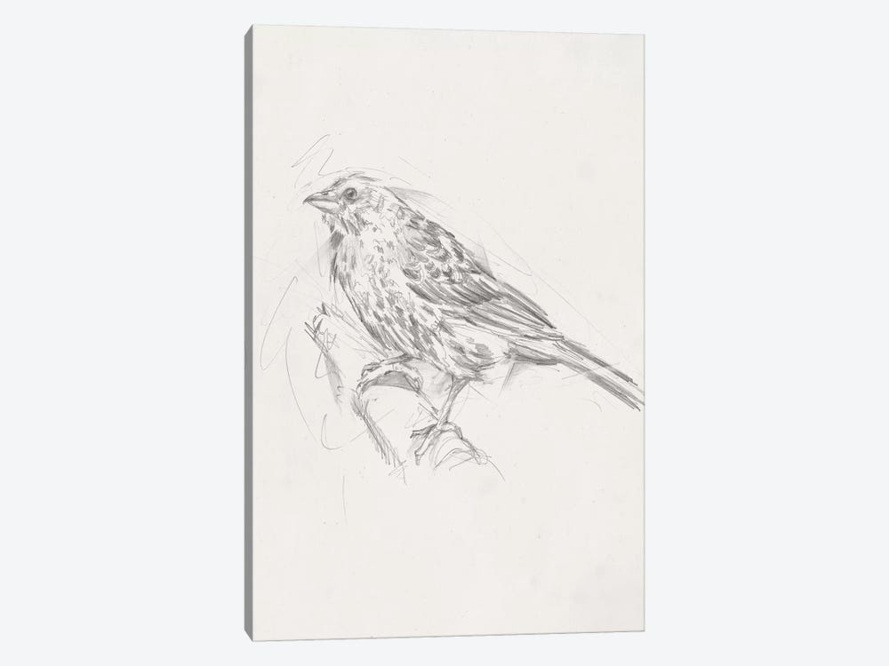 Avian Study  III by Ethan Harper 1-piece Art Print