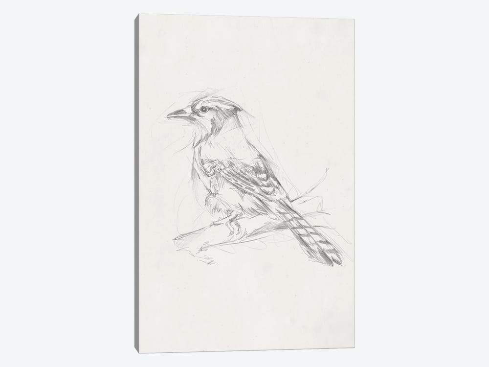 Avian Study  IV by Ethan Harper 1-piece Canvas Artwork