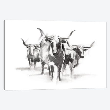 Contemporary Cattle I Canvas Print #EHA475} by Ethan Harper Canvas Artwork
