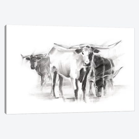 Contemporary Cattle II Canvas Print #EHA476} by Ethan Harper Canvas Wall Art