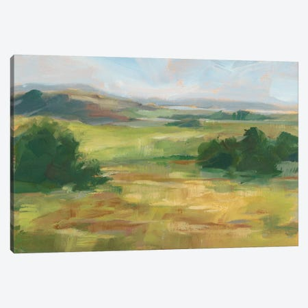 Green Valley I Canvas Print #EHA485} by Ethan Harper Art Print