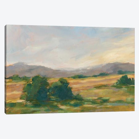 Green Valley II Canvas Print #EHA486} by Ethan Harper Art Print