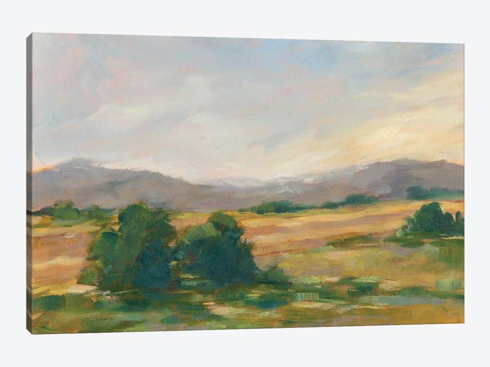 Green Valley II by Ethan Harper 1-piece Canvas Wall Art