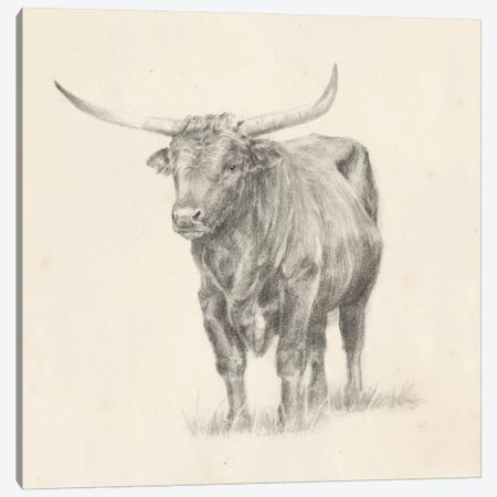 Longhorn Steer Sketch I 3-Piece Canvas #EHA494} by Ethan Harper Canvas Art