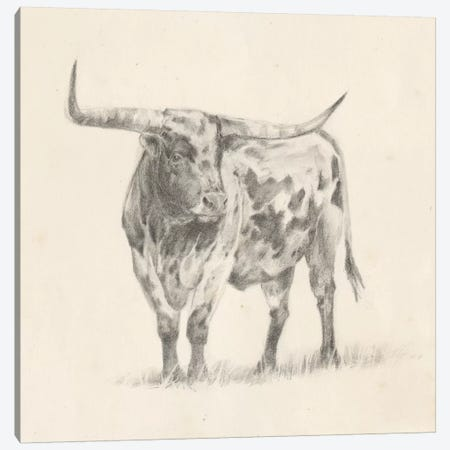 Longhorn Steer Sketch II Canvas Print #EHA495} by Ethan Harper Canvas Wall Art