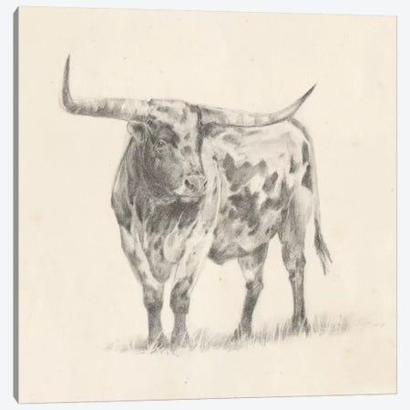 Longhorn Steer Sketch II Canvas Print #EHA495} by Ethan Harper Canvas Wall Art