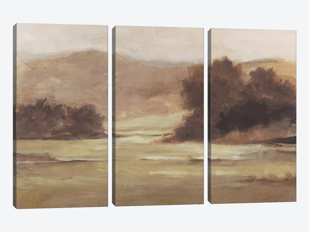 Muted Landscape I by Ethan Harper 3-piece Canvas Art
