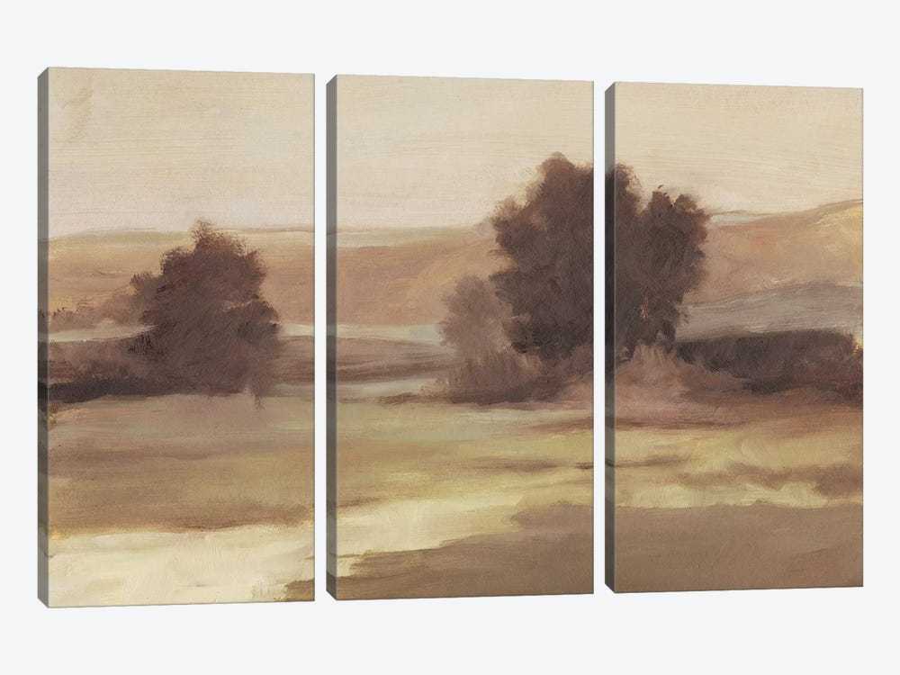 Muted Landscape II by Ethan Harper 3-piece Art Print