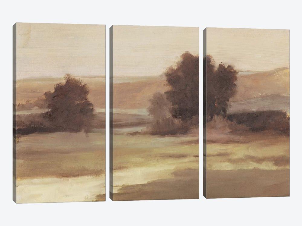 Muted Landscape II by Ethan Harper 3-piece Art Print