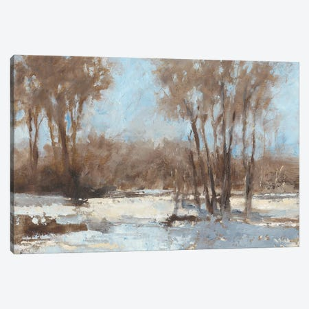 Sunlit I Canvas Print #EHA511} by Ethan Harper Canvas Art