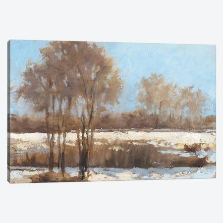 Sunlit II Canvas Print #EHA512} by Ethan Harper Canvas Wall Art
