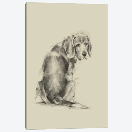 Puppy Dog Eyes I Canvas Print #EHA548} by Ethan Harper Canvas Print
