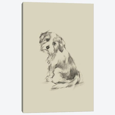 Puppy Dog Eyes III Canvas Print #EHA550} by Ethan Harper Canvas Art