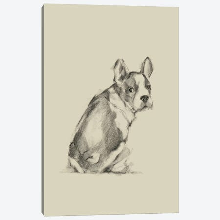 Puppy Dog Eyes IV Canvas Print #EHA551} by Ethan Harper Canvas Wall Art
