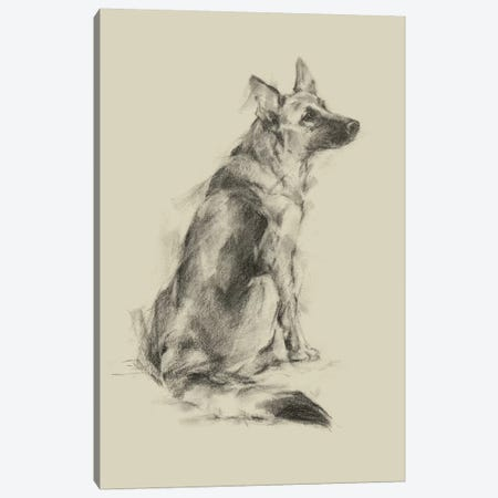 Puppy Dog Eyes V Canvas Print #EHA552} by Ethan Harper Canvas Artwork