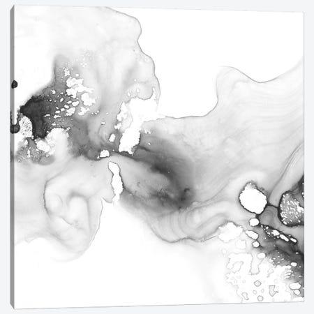 Smoke & Water I Canvas Print #EHA562} by Ethan Harper Art Print