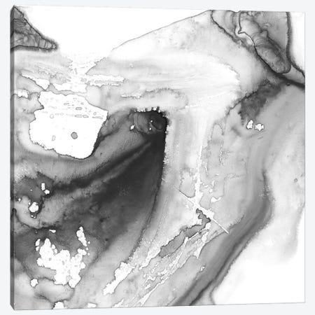 Smoke & Water IV Canvas Print #EHA565} by Ethan Harper Canvas Wall Art