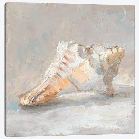 Impressionist Shell Study I Canvas Print #EHA574} by Ethan Harper Art Print