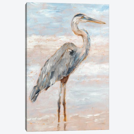 Beach Heron I Canvas Print #EHA584} by Ethan Harper Canvas Art