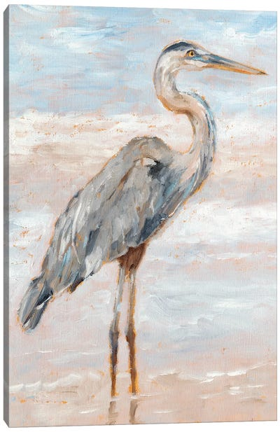 Beach Heron I Canvas Art Print