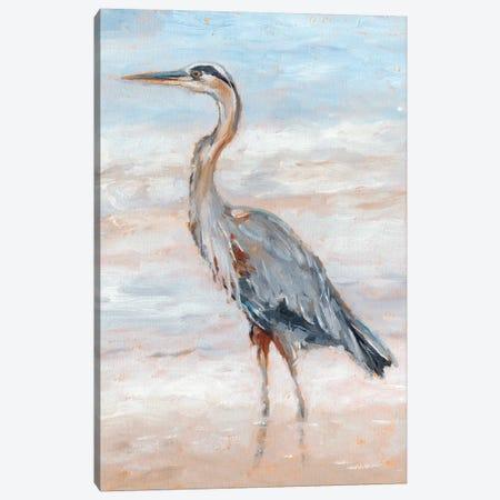 Beach Heron II Canvas Print #EHA585} by Ethan Harper Canvas Artwork