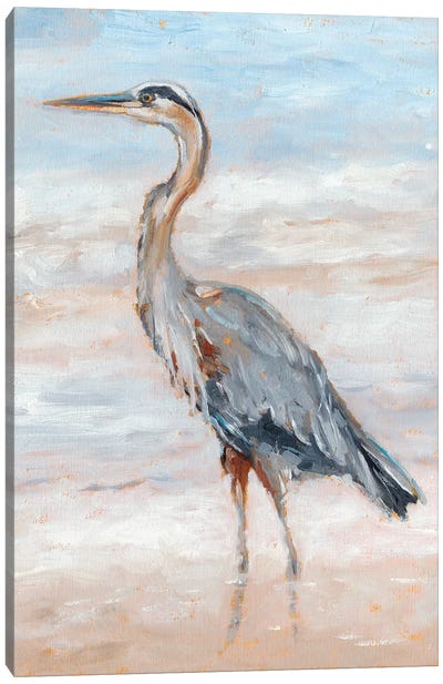 Beach Heron II Canvas Art Print