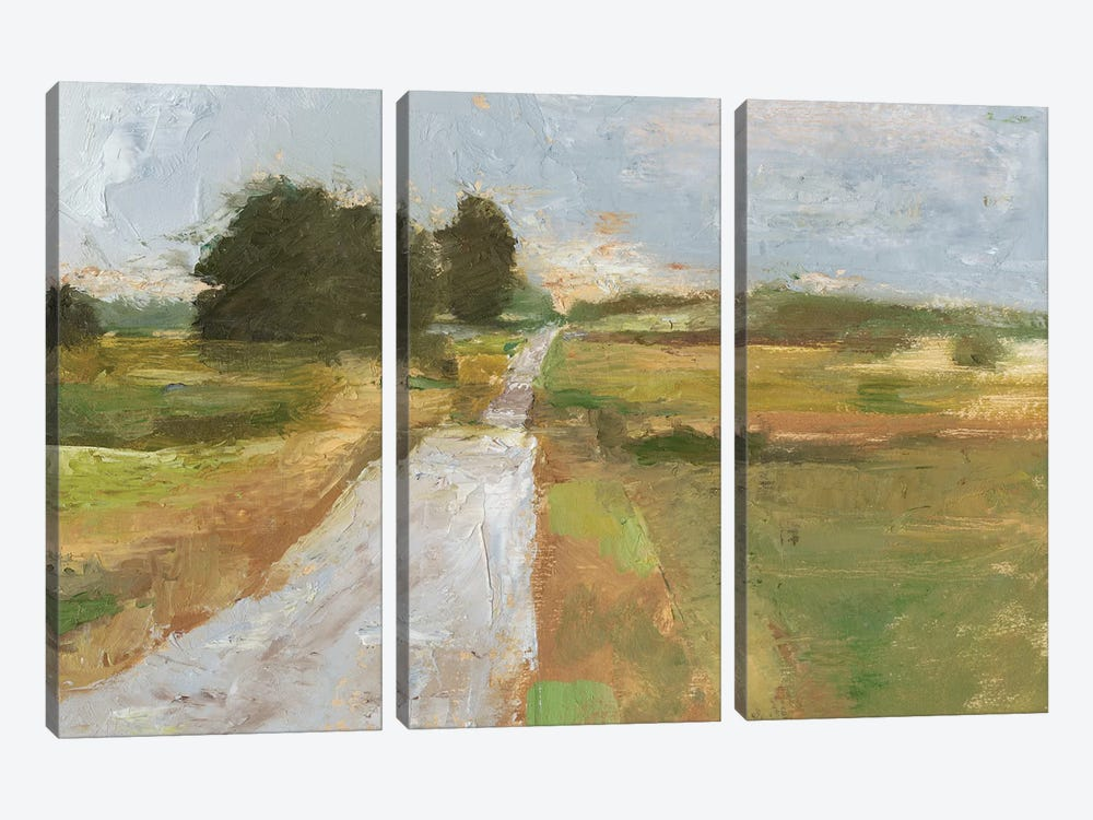 Back Country Road I by Ethan Harper 3-piece Canvas Print