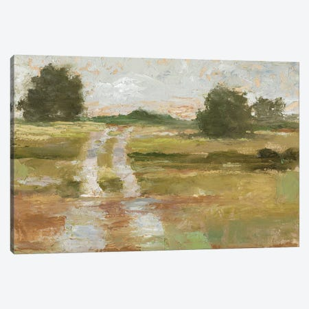 Back Country Road II Canvas Print #EHA618} by Ethan Harper Art Print