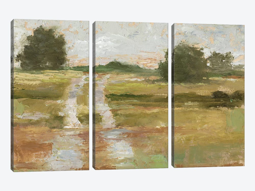 Back Country Road II by Ethan Harper 3-piece Canvas Artwork