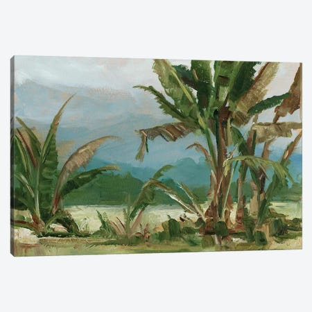 Southern Palms II Canvas Print #EHA647} by Ethan Harper Canvas Art Print