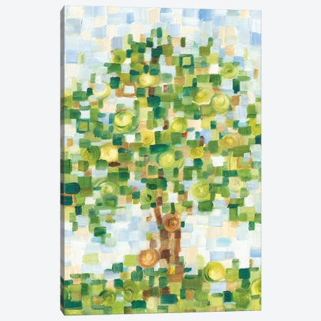 Quilted Tree I Canvas Print #EHA671} by Ethan Harper Art Print