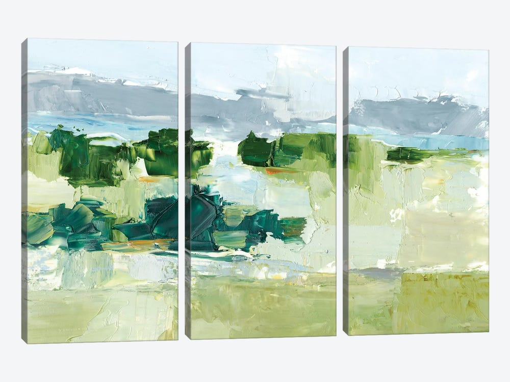 Warm Spring II by Ethan Harper 3-piece Canvas Art