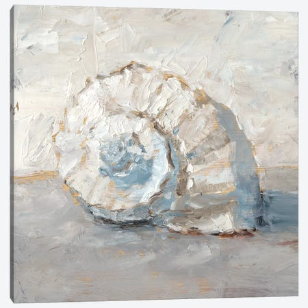 Blue Shell Study III Canvas Print #EHA678} by Ethan Harper Canvas Art Print