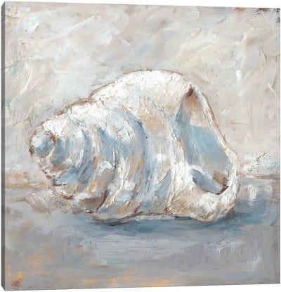 Blue Shell Study IV Canvas Art Print