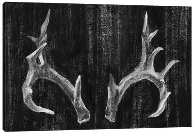 Rustic Antlers I Canvas Art Print