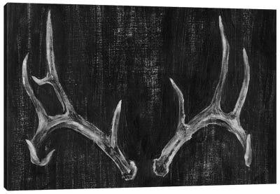Rustic Antlers II Canvas Print #EHA68