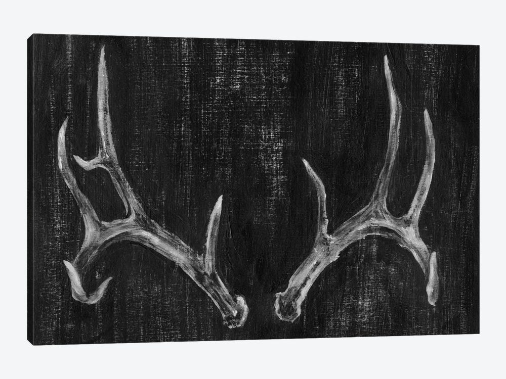 Rustic Antlers II by Ethan Harper 1-piece Canvas Artwork