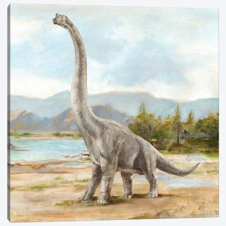 Dinosaur Illustration IV Canvas Print #EHA706} by Ethan Harper Canvas Art