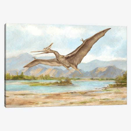 Dinosaur Illustration VI Canvas Print #EHA708} by Ethan Harper Canvas Print