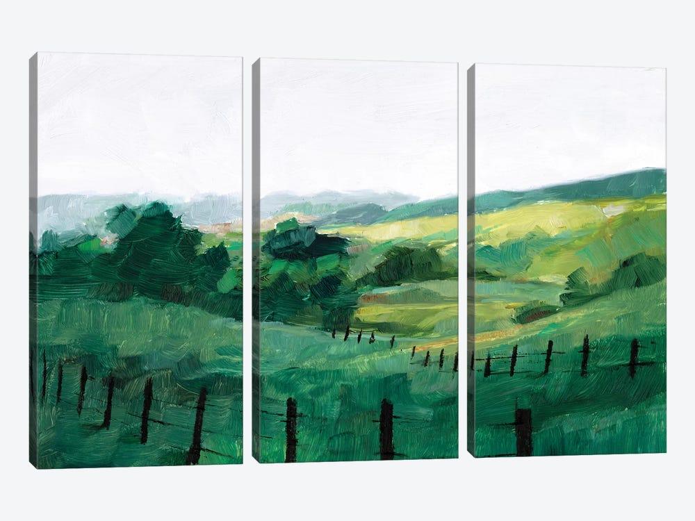 Fence Line II by Ethan Harper 3-piece Canvas Art Print