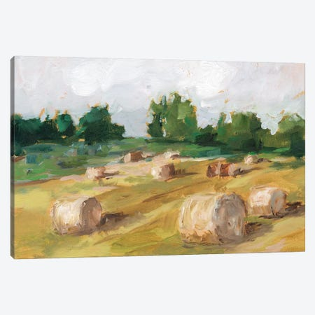 Hay Field I Canvas Print #EHA717} by Ethan Harper Canvas Art Print
