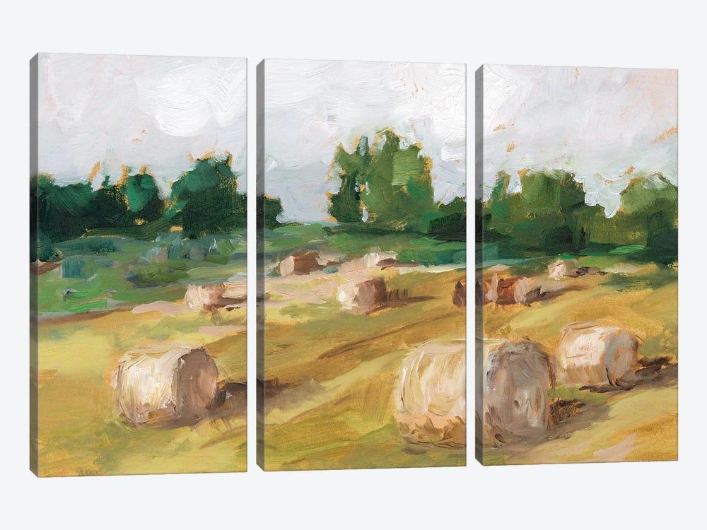 Hay Field I by Ethan Harper 3-piece Canvas Art