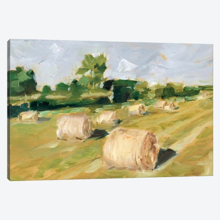 Hay Field II Canvas Print #EHA718} by Ethan Harper Canvas Artwork