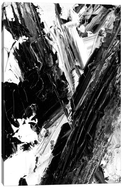 Sporadic II Canvas Art Print