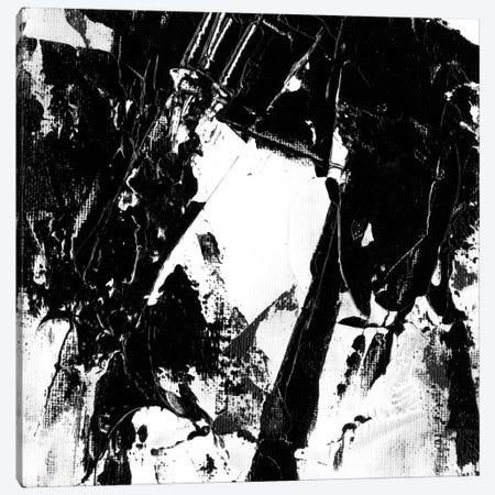 Sporadic IV Canvas Print #EHA76} by Ethan Harper Canvas Print
