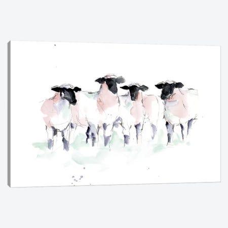 Minimalist Watercolor Sheep II 3-Piece Canvas #EHA804} by Ethan Harper Art Print