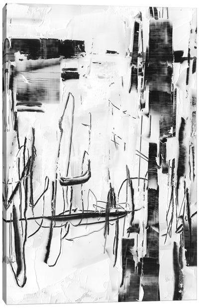 Polar Storm II Canvas Art Print