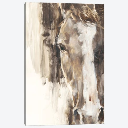 Cropped Equine Study I Canvas Print #EHA825} by Ethan Harper Canvas Art Print
